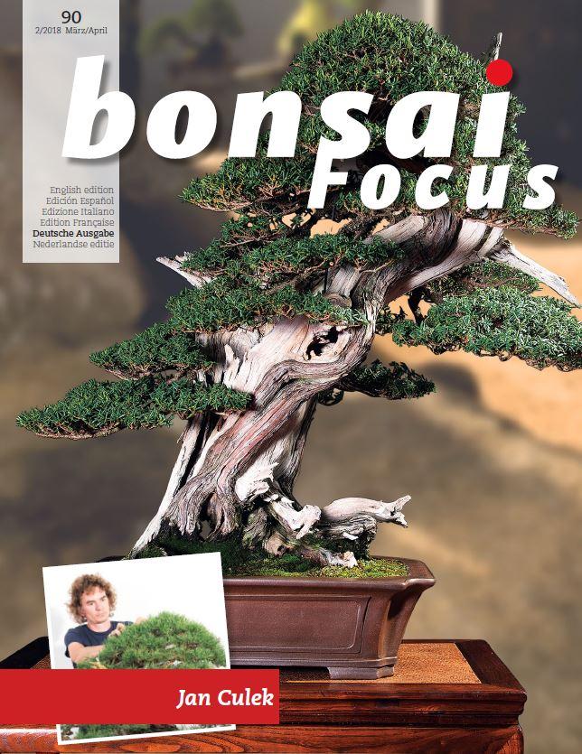 bonsai focus aktuelle ausgabe 2018 93 download. Black Bedroom Furniture Sets. Home Design Ideas
