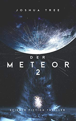 Joshua-Tree-Der-Meteor-2.jpg